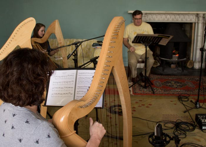 Harps in Annesbrook - The Chronicles of Meath By Vincent Kennedy